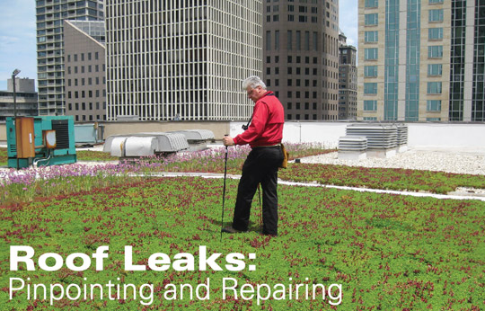 Roof Leaks: Pinpointing And Repairing