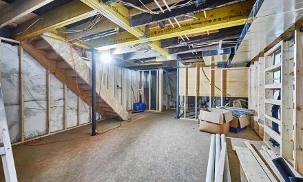 Livable Basements