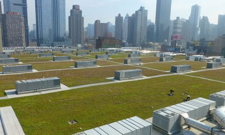 Big Convention Center Gets a Big Green Roof