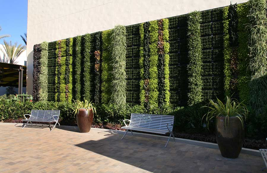Green Walls, A Different Direction