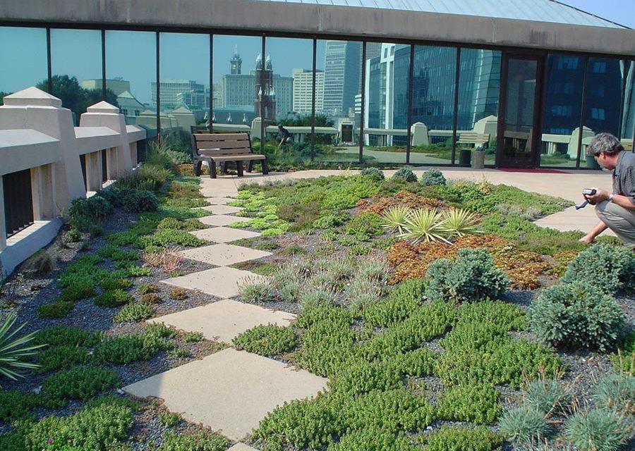 Green Roof As A Retrofit Option Waterproof Magazine